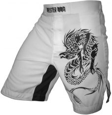 Meister-MMA-Dragon-Hybrid-Shorts